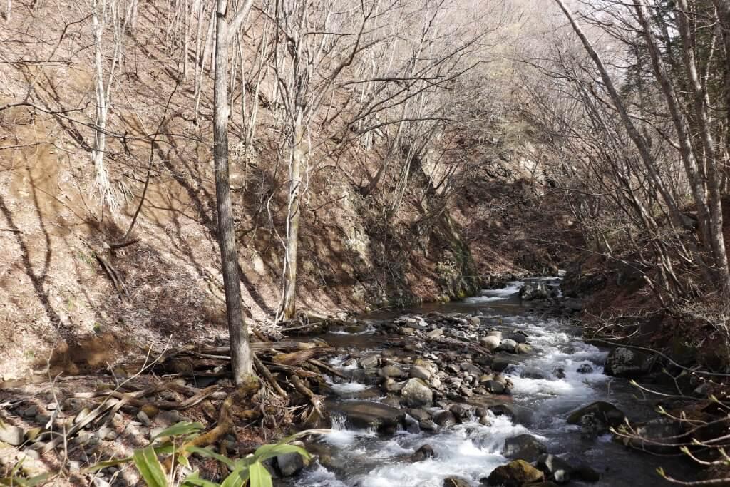 【桐の木平キャンプ場】隣接する天然川