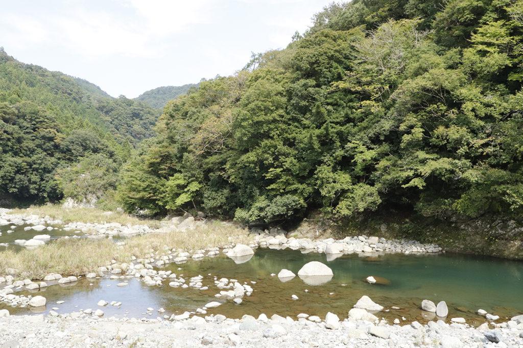 青根キャンプ場脇の道志川