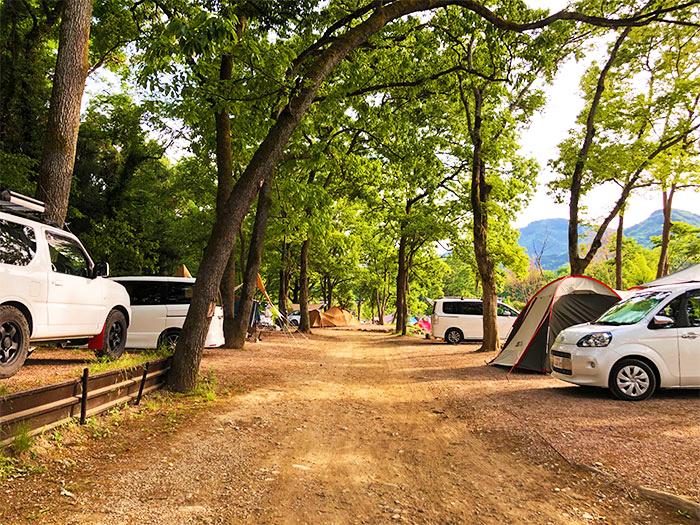 【長瀞オートキャンプ場】森のサイト